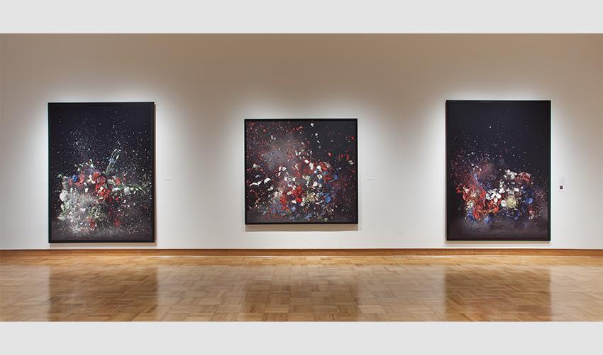 Ori Gersht: Lost in Time   Santa Barbara Museum of Art